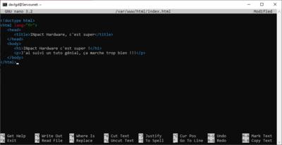 Freebox OS 4.1 Delta VM Installation
